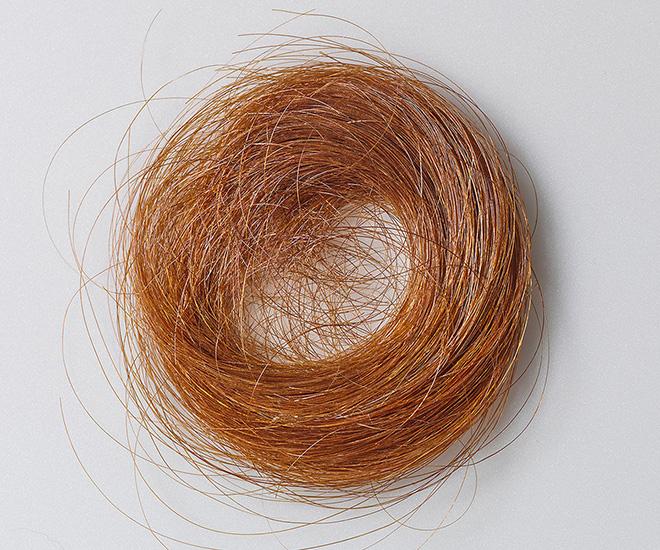 Mechón del cabello de Emily Dickinson enviado a Emily Fowler Ford hacia 1853.